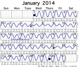 Notice the spring tides near Full and New Moon.