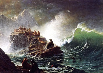 """Seals on the Rocks Farallon Islands""- Albert Bierstadt 1872"
