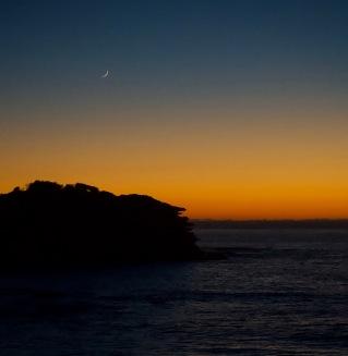 Bondi dawn